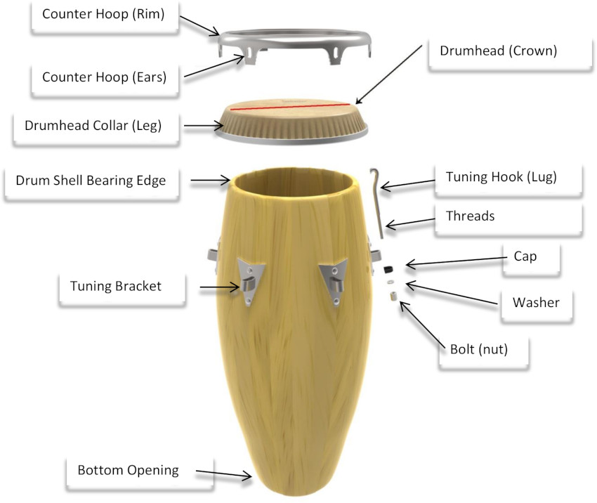 Anatomy Of A Congaknow Your Conga Drum Brand